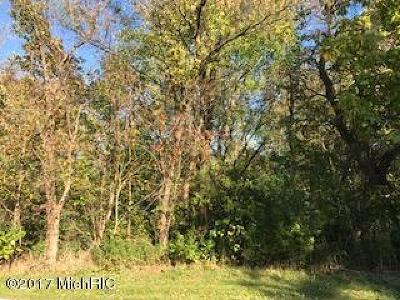 Residential Lots & Land For Sale: 2609 S Park Road