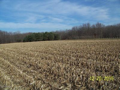 Kent County Residential Lots & Land For Sale: 10195 10 Mile Road NE #1
