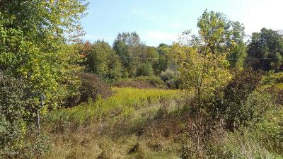 Kent County Residential Lots & Land For Sale: 12070 Stebbins Avenue