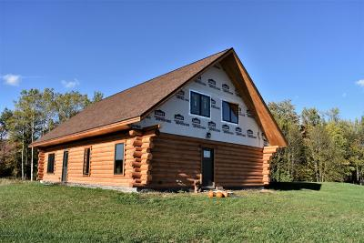 Custer MI Single Family Home For Sale: $255,000