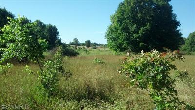 Allegan County Residential Lots & Land For Sale: 1 W Center Street W