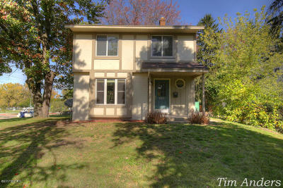 Grand Rapids Single Family Home For Sale: 201 Russwood Street NE