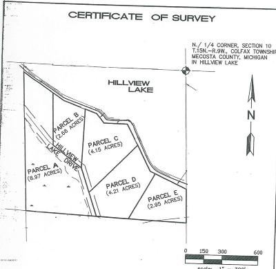 Mecosta County Residential Lots & Land For Sale: 00 S Hillview Lake Drive #Parcel D