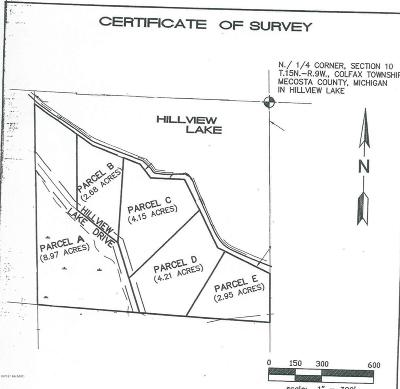 Mecosta County Residential Lots & Land For Sale: 00 S Hillview Lake Drive #Parcel E