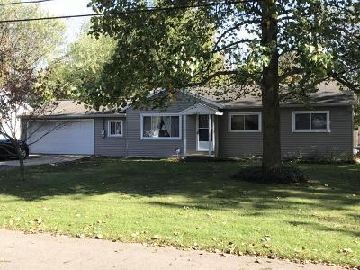 Kalamazoo County Single Family Home For Sale: 10647 Schuur