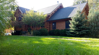 Pentwater Single Family Home For Sale: 7207 S Pere Marquette Highway