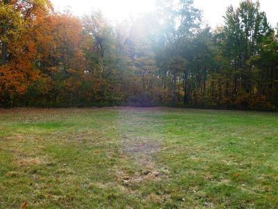 New Buffalo Residential Lots & Land For Sale: 13254 W Wilson Road