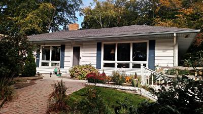 Ludington Single Family Home For Sale: 809 St Catherine