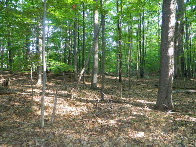 Residential Lots & Land For Sale: Monroe