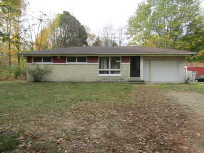 South Haven Single Family Home For Sale: 68733 M-43