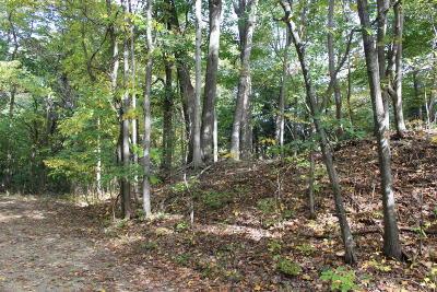 Bridgman Residential Lots & Land For Sale: Valley Ridge Road