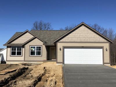 Holland Single Family Home For Sale: 3803 Elm Ridge Drive