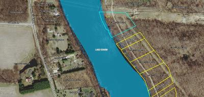 Berrien Springs Residential Lots & Land For Sale: 0-Lot 1 S Lake Chapin Road