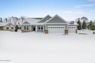 Zeeland Single Family Home For Sale: 9320 Grand Ridge Drive