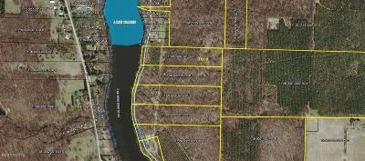 Buchanan Residential Lots & Land For Sale: 0-Lot 9 S Lake Chapin Road