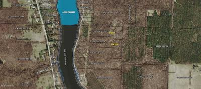 Buchanan Residential Lots & Land For Sale: 0-Lot 10 S Lake Chapin Road