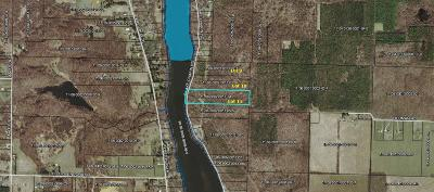 Buchanan Residential Lots & Land For Sale: 0-Lot 11 S Lake Chapin Road