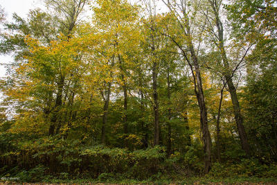 Coloma, Watervliet Residential Lots & Land For Sale: 7876 Pear
