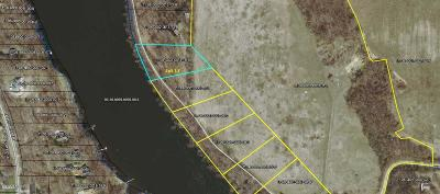 Buchanan Residential Lots & Land For Sale: 0-Lot 17 S Lake Chapin Road