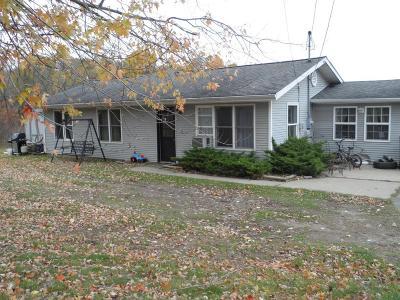 Berrien Springs Single Family Home For Sale: 4184 E Snow Road