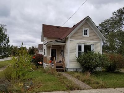 Manistee County Single Family Home For Sale: 166 Ford Street