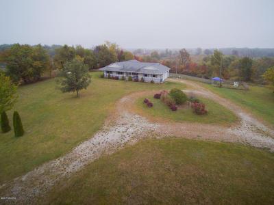Nashville Single Family Home For Sale: 8143 S Clark Road