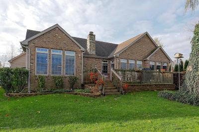 Cass County Single Family Home For Sale: 15202 Joseph Street