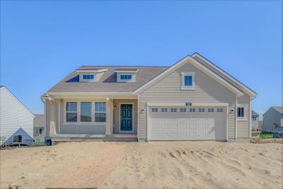 Jenison Single Family Home For Sale: 3281 Lowingside Drive