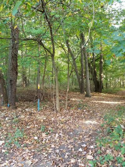 Calhoun County Residential Lots & Land For Sale: N Gordon