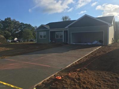 Kalamazoo Single Family Home For Sale: 4252 Wild Meadow