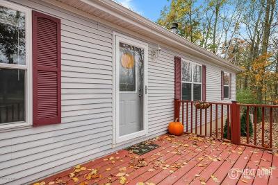 Rockford Single Family Home For Sale: 9898 Whitten Street NE
