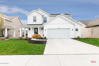 Allendale Single Family Home For Sale: 5918 Farmview Drive