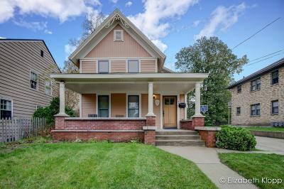 Single Family Home For Sale: 316 Henry Avenue SE