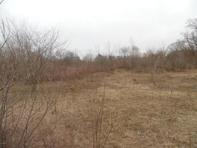 Niles Residential Lots & Land For Sale: Parcel 4 S 11 Th Street