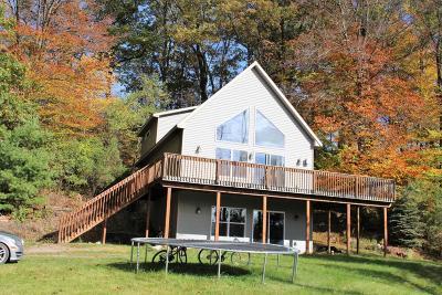 Sparta Single Family Home For Sale: 766 Stonecrest Street NE