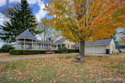 Newaygo County Single Family Home For Sale: 6684 S Green