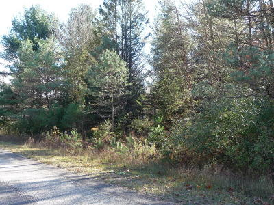 Mecosta County Residential Lots & Land For Sale: 10907 Dobbyn Drive