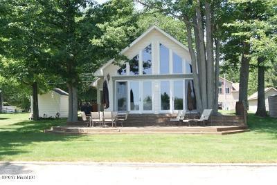 Single Family Home For Sale: 7289 W White Birch