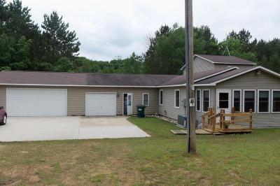 Mecosta County Single Family Home For Sale: 18871 Stonehouse