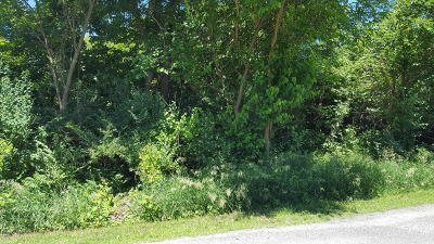 St. Joseph County Residential Lots & Land For Sale: Vidzeme