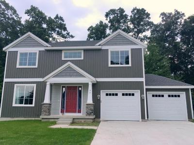 Newaygo County Single Family Home For Sale: Lot 9 W Sand Hills Court