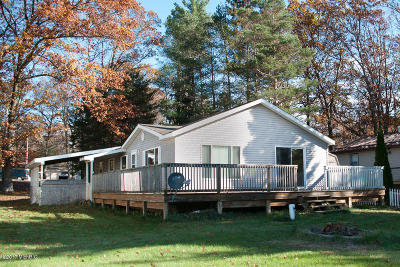 Mecosta County Single Family Home For Sale: 18289 12 Mile Road
