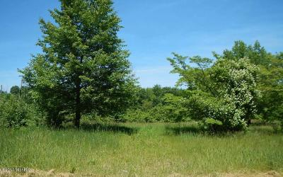 Cass County Residential Lots & Land For Sale: Chain Lake Street