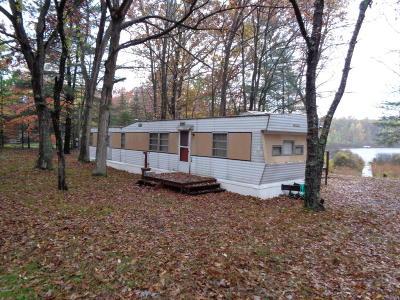 Newaygo County Single Family Home For Sale: 1076 W Echo Drive