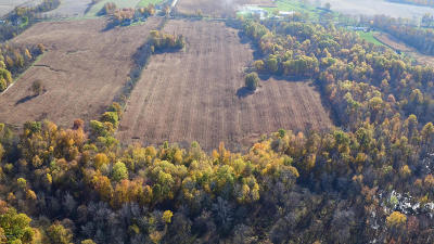 Residential Lots & Land For Sale: W Buffalo Rd