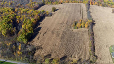 Residential Lots & Land For Sale: W Buffalo Rd - B