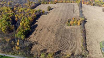 Galien Residential Lots & Land For Sale: W Buffalo Rd - B