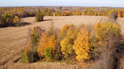 Galien Residential Lots & Land For Sale: W Buffalo Rd - C