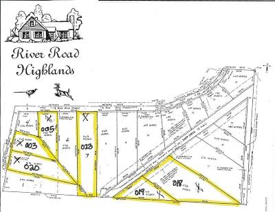 Newaygo County Residential Lots & Land For Sale: Lot 19 Raap Drive