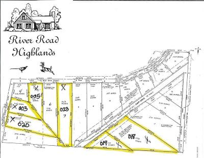 Newaygo County Residential Lots & Land For Sale: Lot 3 S Fitzgerald Avenue
